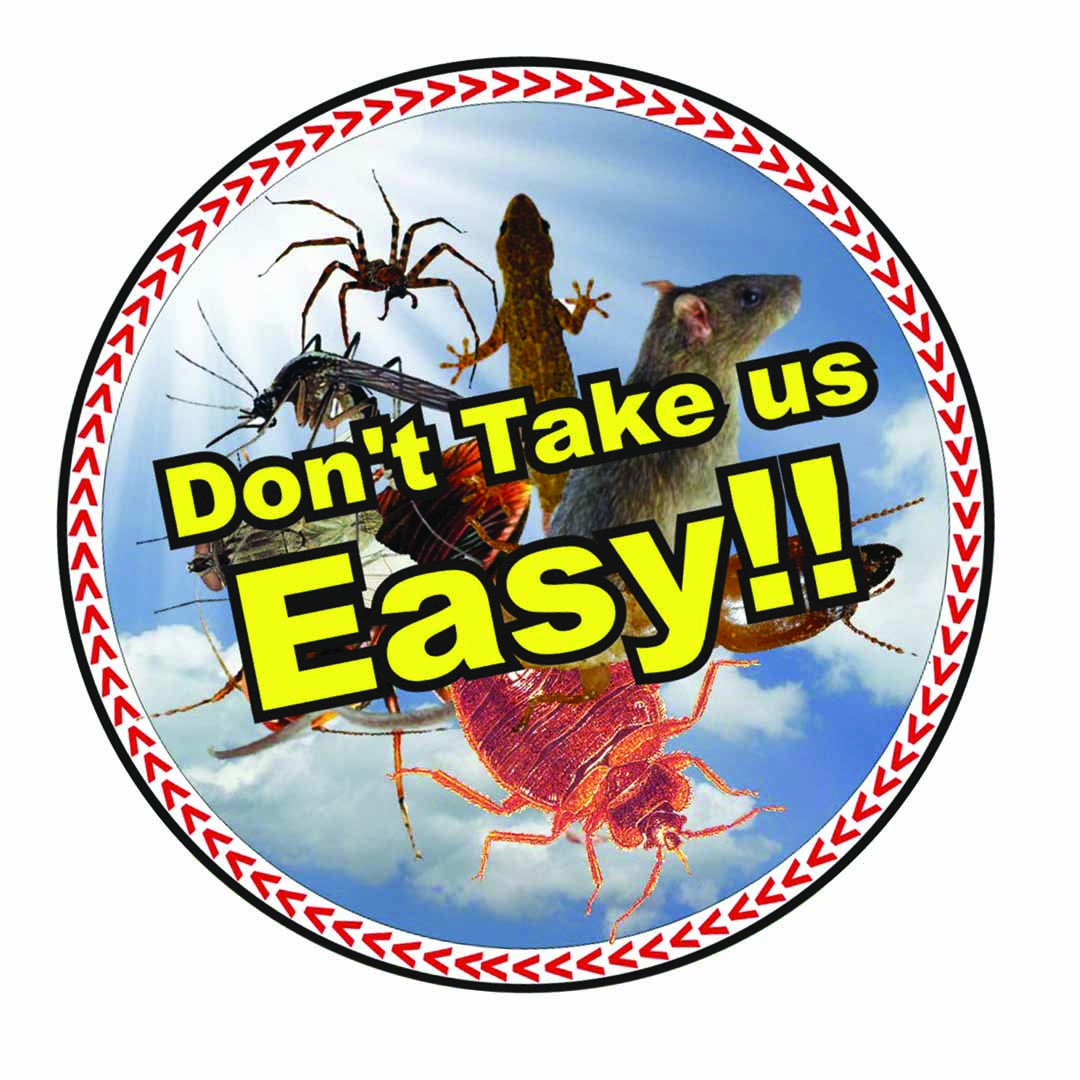 Pest Control Services In Chintadripet
